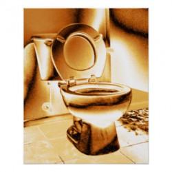 kunglig toalett