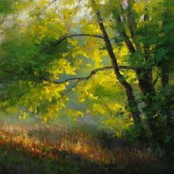 målas skog