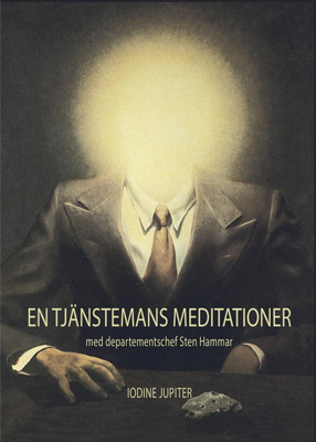 En stjänstemans meditationer