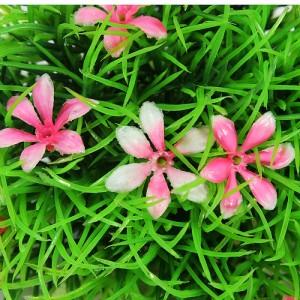 plastgräs med rosa blommor