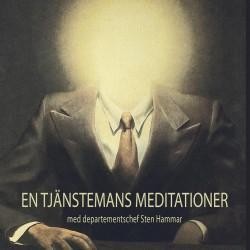En stjänstemans meditationer